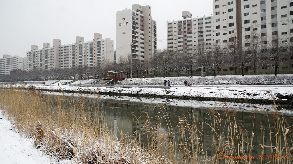 눈오는 온천천
