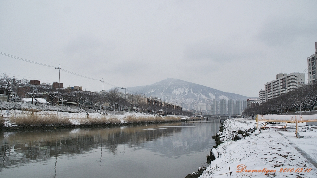 겨울 온천천