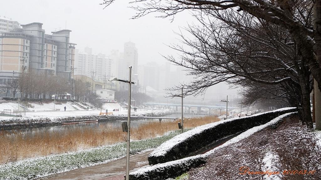 눈오는부산