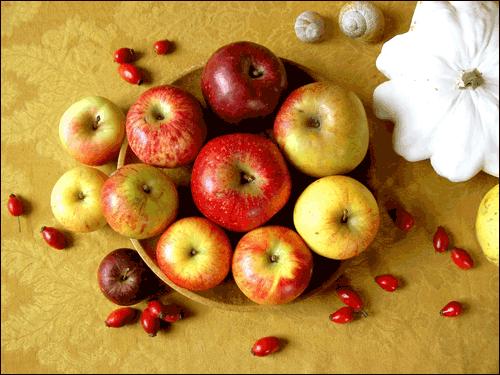 ▲ 비슷한 듯하면서도 모양도 빛깔도 다들 조금씩 다 다른 사과들. 2008 ⓒ 김미수