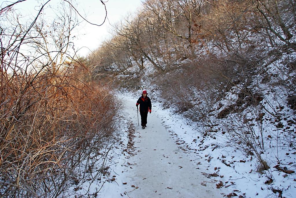 눈오는 가지산 하산길