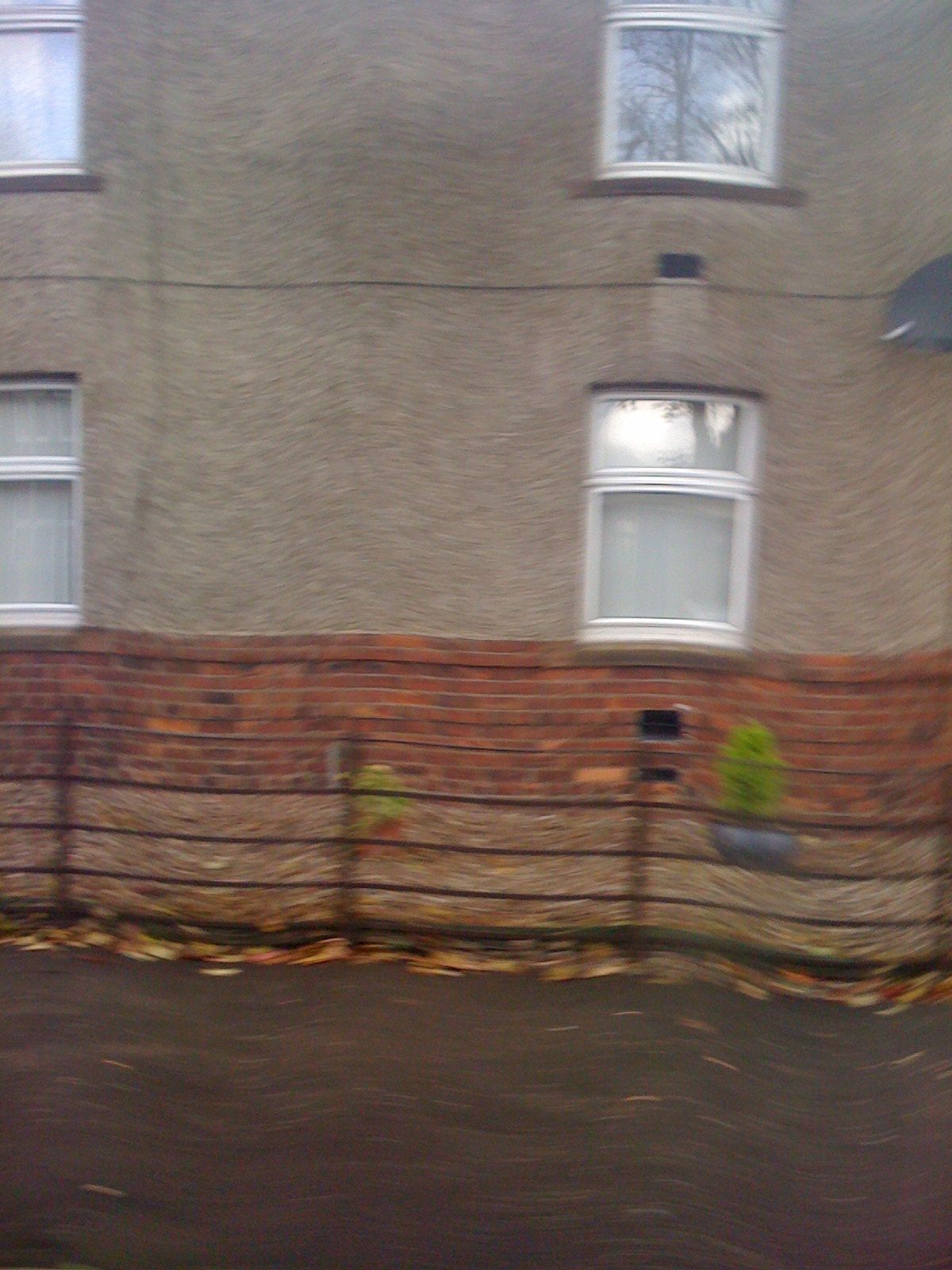 Waving Photo, taken on running bus with iPhone